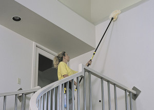 Cleaning with the lambswool duster.