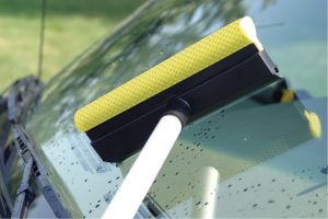 Bug scrubber squeegee.